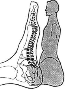 Nervenreflextherapie am Fuß
